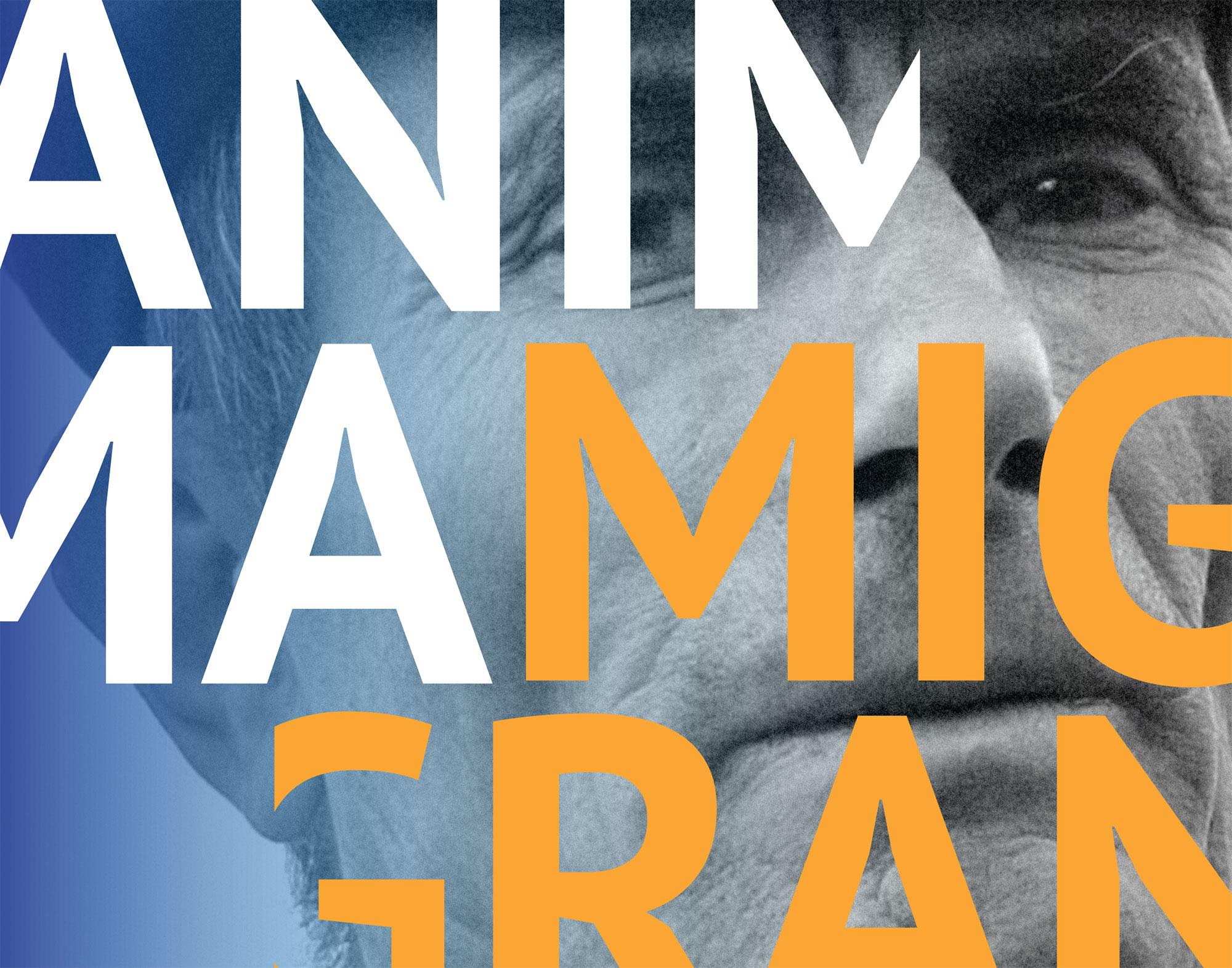 Manifesto-Anima-Migrante-detail